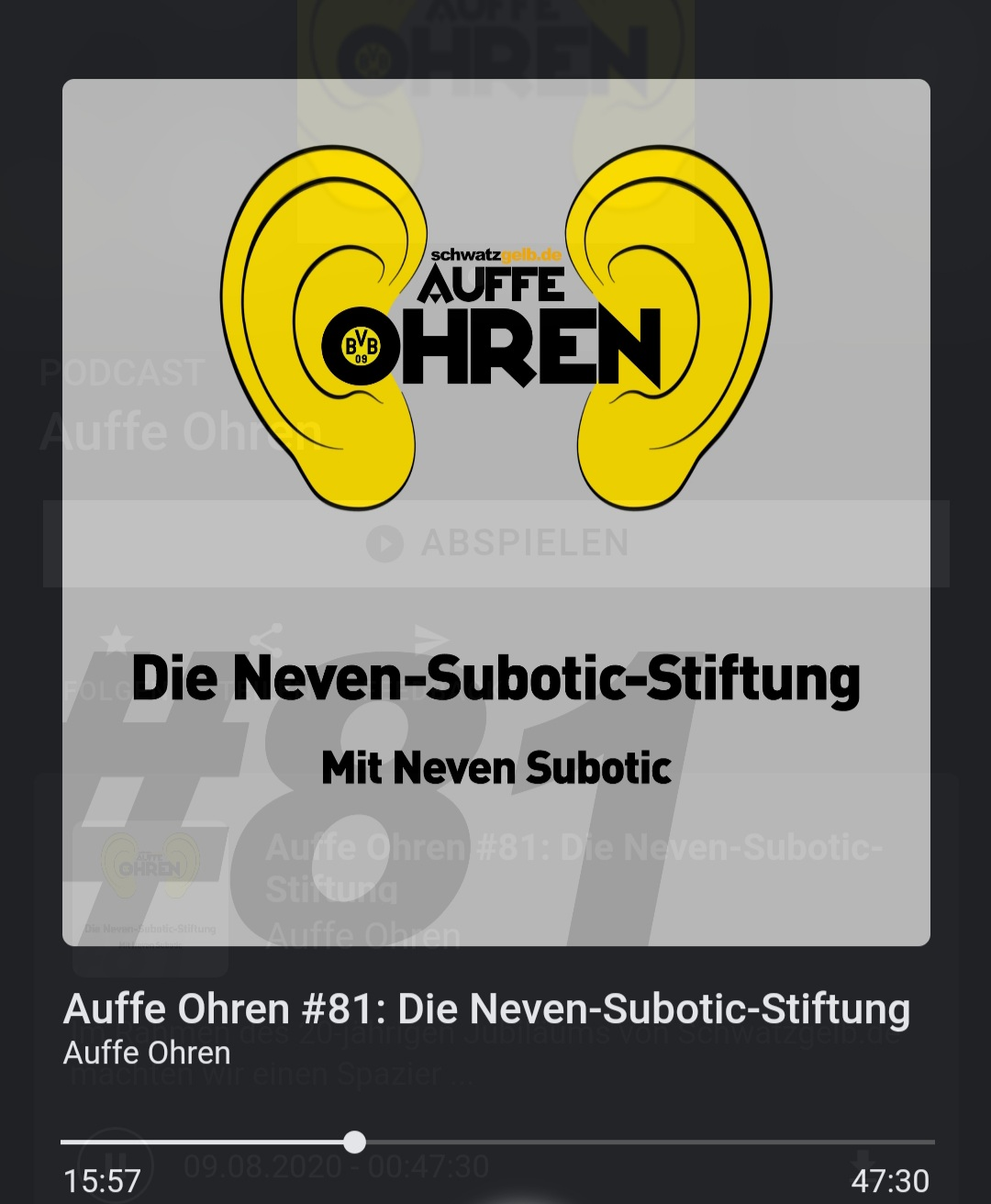 Neven Subotic im Podcast über die Neven-Subotic-Stiftung